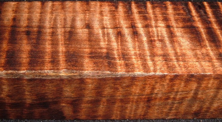 Z500, Curly Tiger Maple Dyed Stabilized, wood block scales/handle, Brown, 1-1/16x1-5/8x5-3/4
